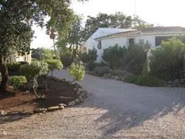 Het zwembad bevindt zich achter de villa en rechts van het gastenhuis. Het  grondstuk is ca.10.000 m2. groot en biedt veel privacy.