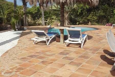 Ferienwohnung Aruba, Oranjestad, Oranjestad - studio Appartements Caya Luna Aruba