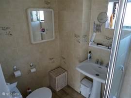 Badkamer met douche-cabine en toilet.