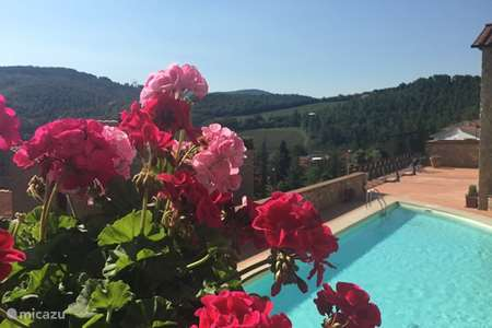 Vacation rental Italy – apartment Borgodigaiole G32