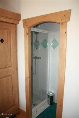 Deze badkamer grenst aan de master bedroom, en bevat douche en wastafel.