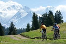 Stap op je fiets en verken de omgeving!