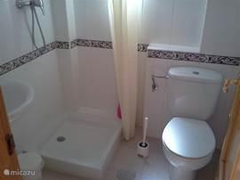 Derde badkamer op de begane grond. Met wastafel, douche en toilet.