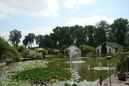 Vakantiehuis Nederland, Gelderland, Voorthuizen vakantiehuis Vista Bonita ( DE KINGFISHER )