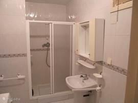 Badkamer met toilet en wasmachine