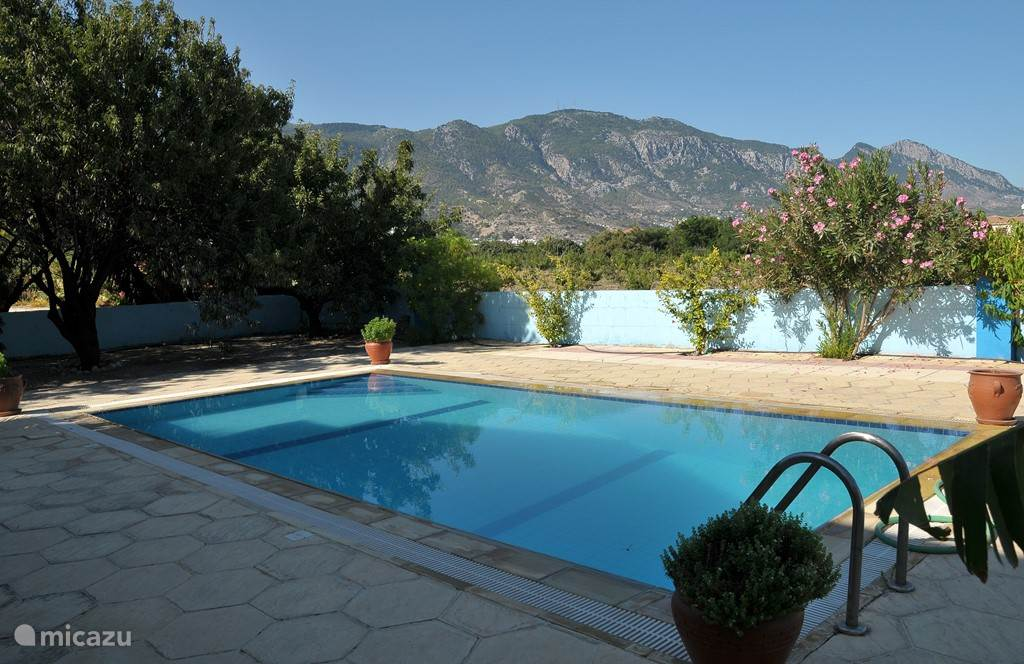 Het zwembad achter in de tuin