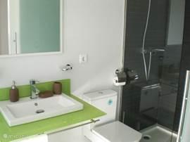 De en suite badkamer in de hoofdslaapkamer met wastafel, toilet en inloopdouche