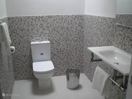 2e Badkamer met toilet, wastafel en douche