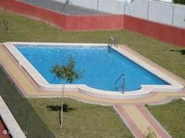 Het gemeenschappelijk zwembad