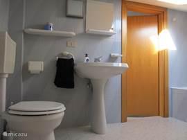 De badkamer boven, met toilet en ligbad.