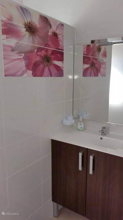 Badkamer voorzien van toilet en vaste wastafel met onderin een kast voor de handdoeken +grote spiegel De wasmachine en wasdroger is verplaatst naar een aparte kast waar tevens ook de nieuwe geiser staat.