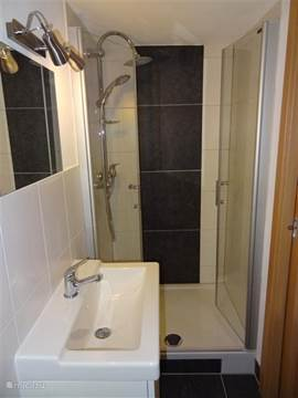 The bathroom has a spacious Doche a beautiful sink and a toilet on the other side.
