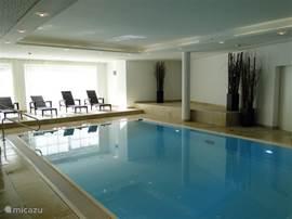Het luxe zwembad met 2 jetstreams en rustruimte is het paradepaardje van het wellness complex.