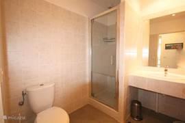 De eerste badkamer op de begane grond met tweede toilet, douche en wastafelmeubel