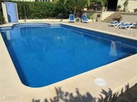 zwembad 8 x 5 meter