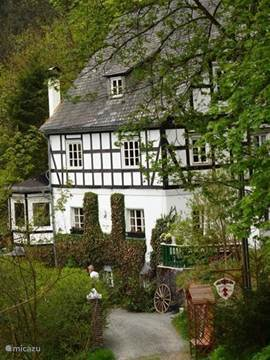 De sfeervolle, authentieke vakwerk-woning. Schitterend gelegen aan de rand van het dorp en bos. Rust & ruimte is hier het credo!