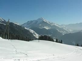 winters uitzicht vanaf plek waar het chalet is gebouwd
