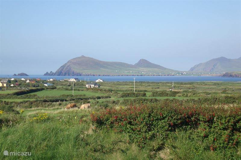 Vacation rental Ireland, Kerry, Ballyferriter holiday house Coinin House