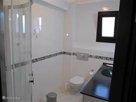 badkamer behorend bij de ouder slaapkamer, met wastafel, toilet en douche.