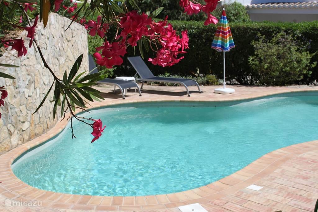 Vakantiehuis Portugal, Algarve, Alvor villa Villa Oleander, zeezicht en zwembad