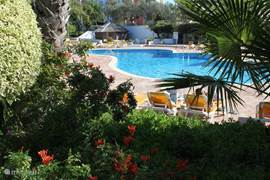 Het resort heeft prachtige tuinen en is besloten en beveiligd.