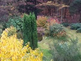 De tuin in volle herfstkleuren.