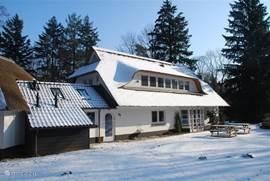 Helemaal rechtsonder, hertensporen in de sneeuw. Reeën zijn regelmatig vanuit huis te bewonderen.
