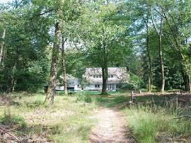 Gezicht op het huis vanuit de achtertuin. Het bos is redelijk open, waardoor het zicht tot ver in het bos gaat.