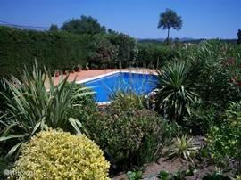 Aangezicht zwembad en botanische tuin vanaf het terras voor het huis.
