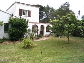 Vooraanzicht huis en patio gelegen aan grasweide en afgeschermd door mooie ronde haag.