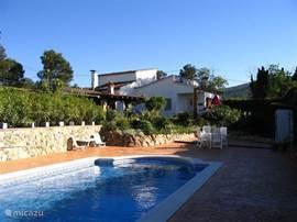 Het zwembad met aangezicht op het huis.