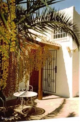 Voordeur met palm.