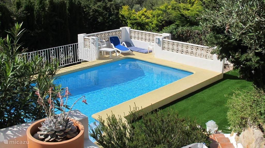zwembad wordt nu omringd door een grasmat
