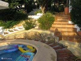 Zwembad en achtertuin