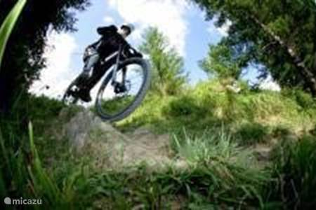 Biking / Downhill Mountain Biking