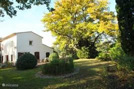 VILLA met zijtuin en terras gelegen aan de eetkamer