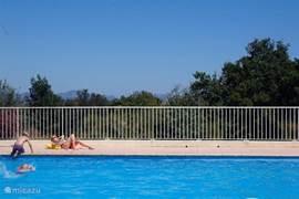 Ruim zwembad met veel privacy, ook in hoog zomer!