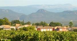 Uitzicht vanuit het wijnveld naar Green Village