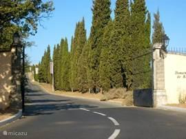 Oprijlaan naar de golfbaan van Roquebrune sur Argens en de domaines Green Village en les rives du Golf