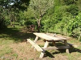 De boomgaard is een plek waar u heerlijk tot rust kunt komen