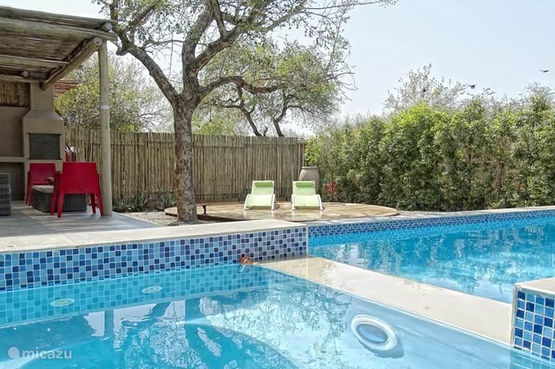 Vakantiehuis Zuid-Afrika, Limpopo, Hoedspruit Vakantiehuis BushGlam Luxury Holiday Home, Kruger