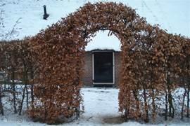 Beukenhagen rondom de tuin geven ook in de winter een sfeervol plaatje.