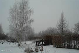 Een winters plaatje van de tuin.