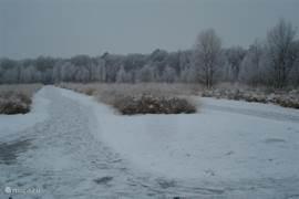 Als het voldoende wintert, ligt een natuurijsbaan in de omgeving.
