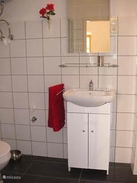 kleine badkamer vanuit slaapkamer te bereiken