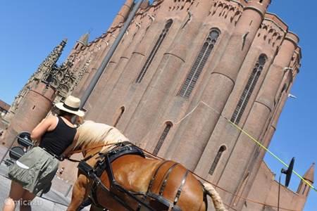 Albi, prachtige bouwwerken, Toulouse Lautrec museum, terrasjes, restaurantjes, winkelen,.....