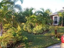 Met de foto's zal ik u door Villa Palm Breeze heen leiden. U ziet al een stuk van de grote subtropische tuin. Klik op meer foto's voor alle foto's van villa Palm Breeze.
