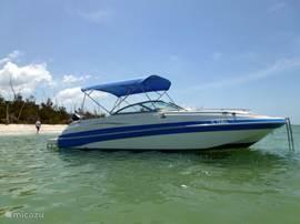 De Nautic Star is een Deck Boat DC230 met een Suzuki 200 pk 4 takt buitenoordmotor. Marine GPS met digitale dieptemeter, toilet, bikini top,radio, stereo muzieksysteem, geïntegreerde koelbox, cockpit verlichting, navigatie kaarten etc. Te huur i.c.m. villa Palm Breeze.