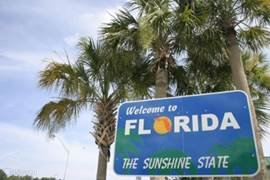 Welkom in Florida en welkom in villa Palm Breeze. Er is nog zoveel meer te vertellen over de Sunshine State. Zoals een Fitness programma dat wij voor u hebben, een golfarrangement, tips over de Everglades en andere bezienswaardigheden.