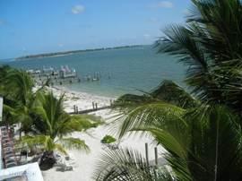 Captiva Island. Dichtbij huis. Met de jetboat of de auto een dagtripje. Witte stranden en palmbomen. U zit hier echt in de Caribiën. Heerlijk snorkelen,